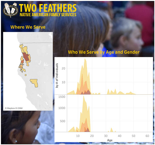 Two Feathers 2021 At A Glance Tableau